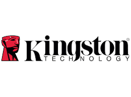 Picture for category KINGSTON